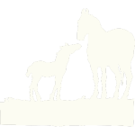 Broodmare & Foaling Services